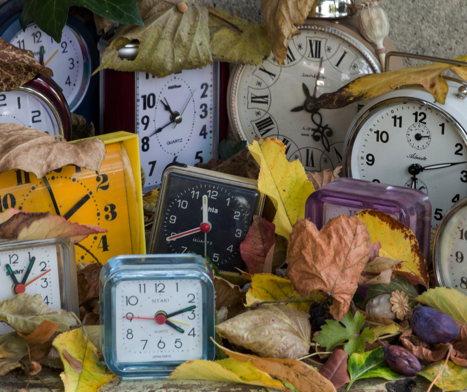 lots of different clock faces in an autumnal back ground