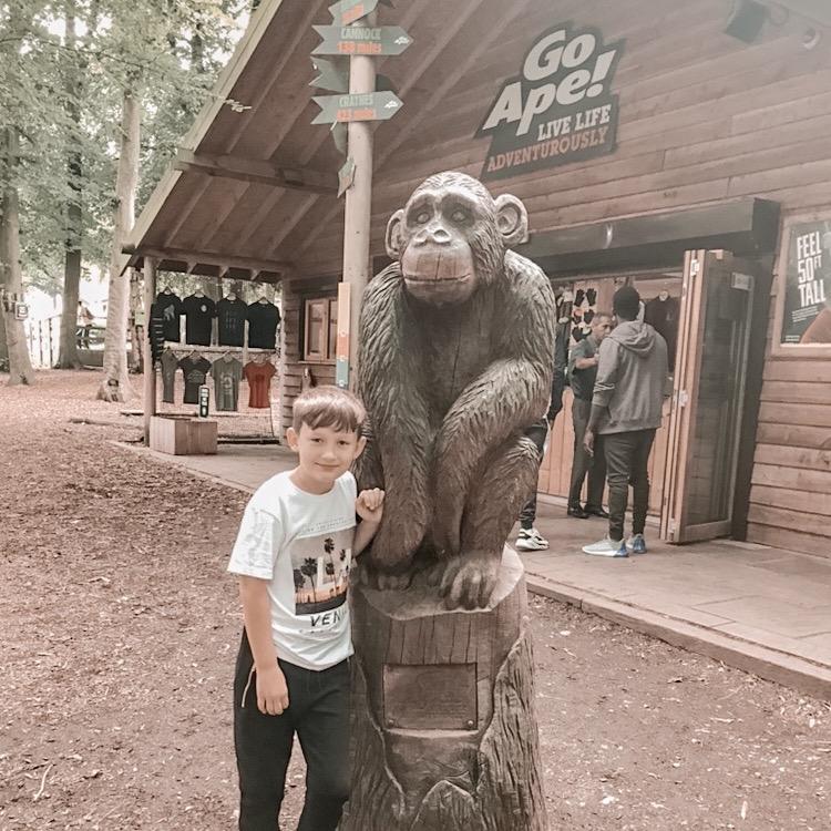 Go Ape Treetop Adventure: Tilgate Park Crawley